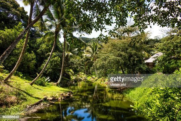 Petite Anse oder Anse la Liberté, Seychellen, Seychelles, SYC, Mahè, groesste Insel, Hauptinsel, Regierungs- und Verwaltungssitz, Inselstaat, Africa,...