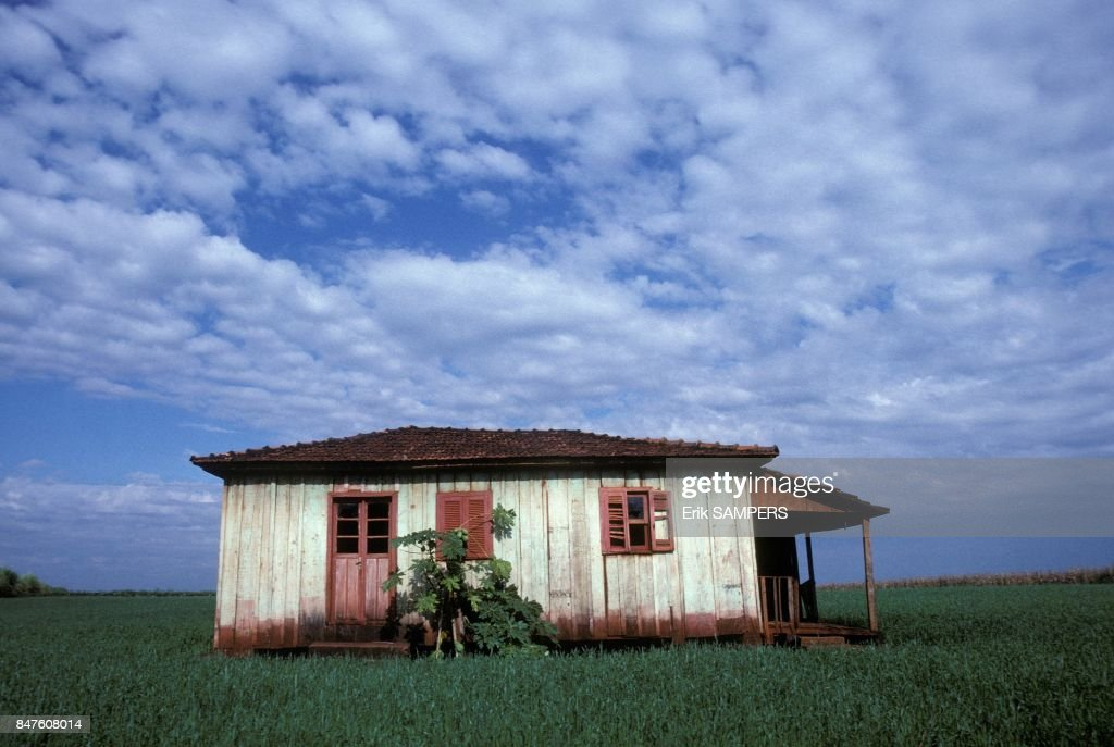 Maison Dans Un Champ Dans Le Mato Grosso Pictures | Getty Images