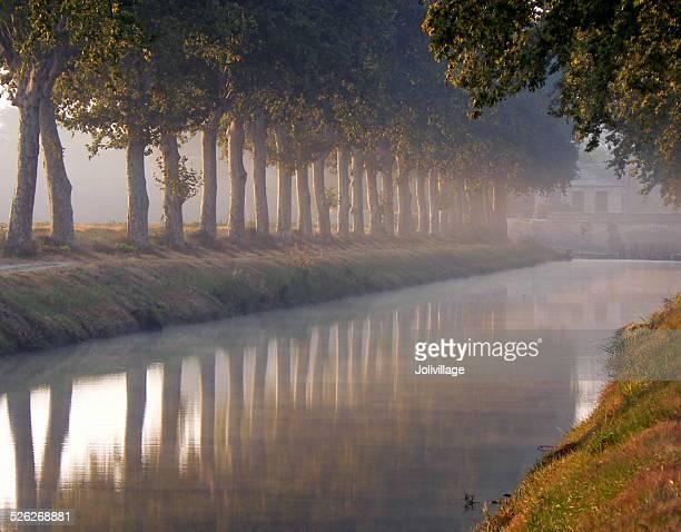 petite morning mist - canal du midi photos et images de collection