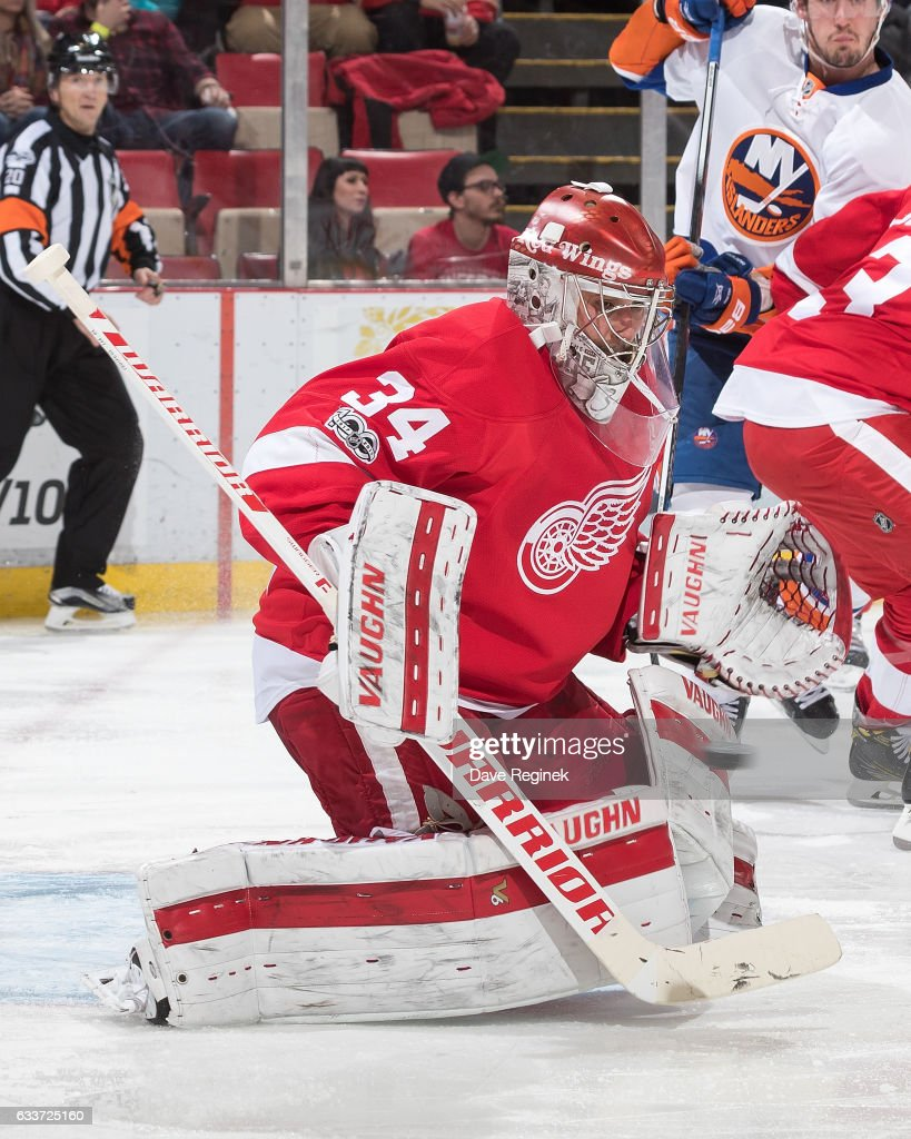 Petr Mrazek #34 of the Detroit Red Wings makes a save during an NHL game against the New York Islanders at Joe Louis Arena on February 3, 2017 in Detroit, Michigan.