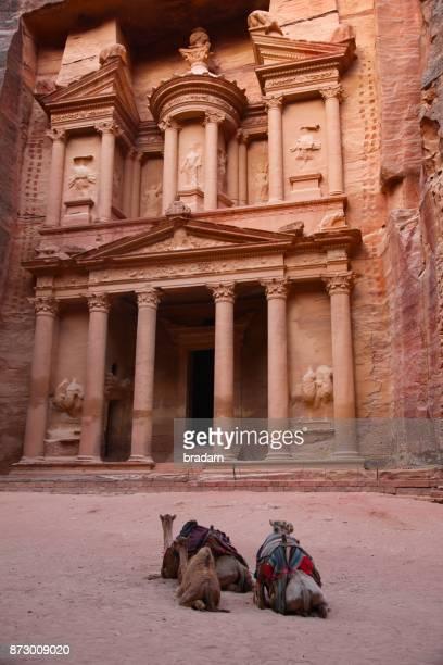 Petra Treasury Al Khazneh with camels