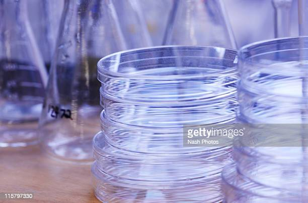Petri Dish and Beakers