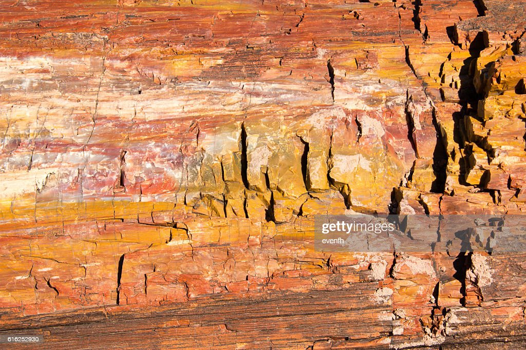 Petrified Forest National Park, Arizona, United States : Stock Photo