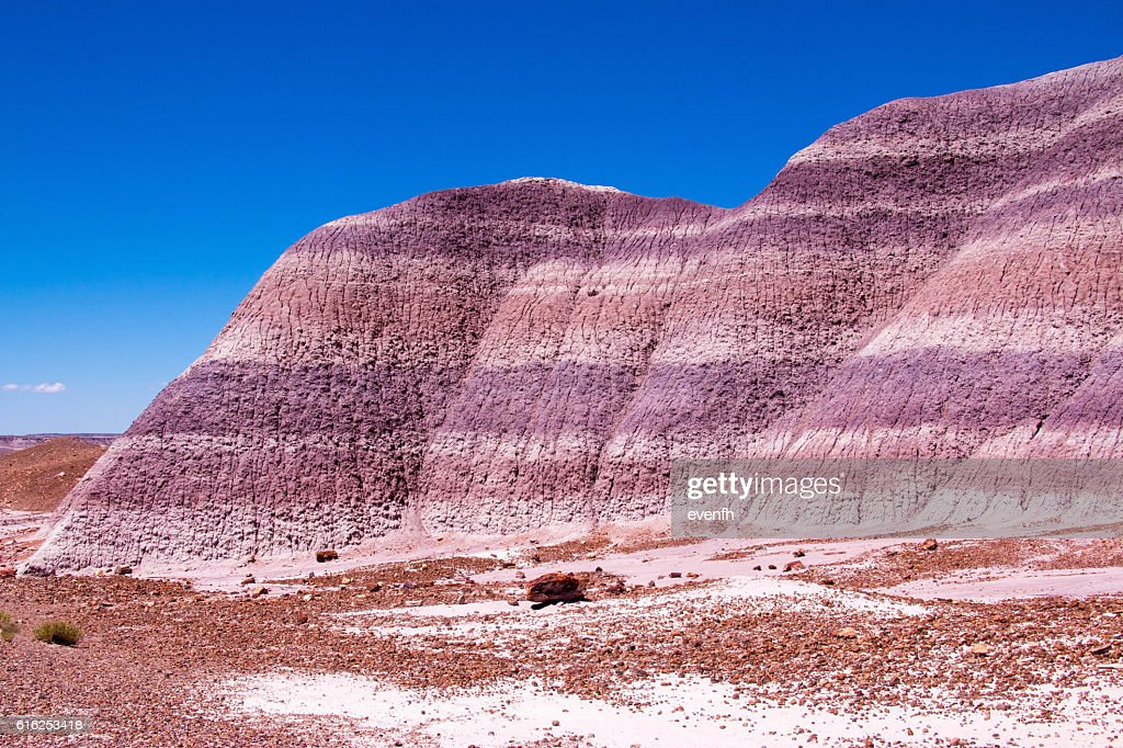 Petrified Forest National Park, Arizona, United States : Foto de stock