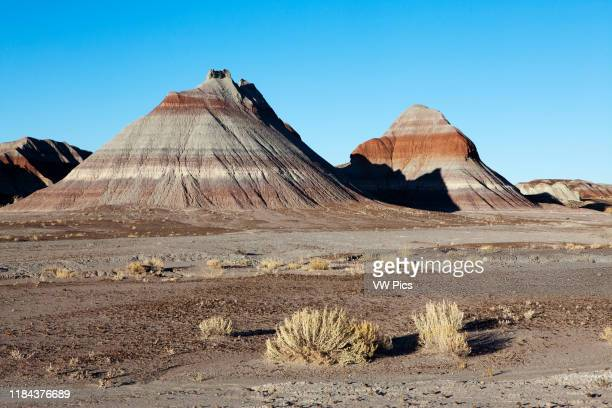 Petrified Forest National Park Arizona USA The Teepees buttes formed by the erosion of the soft and colorful layers of the Chinle Formation Late...