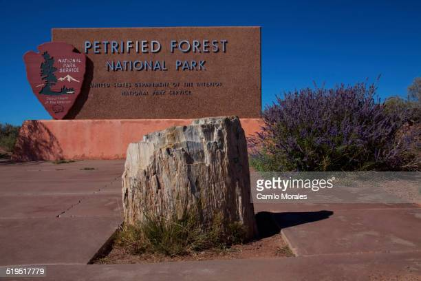 Petrified stump in front of Petrified Forest National Park sign, Arizona, United States
