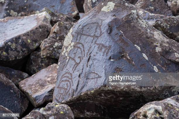 Petroglyphs of animals and hunting scenes in close-up view
