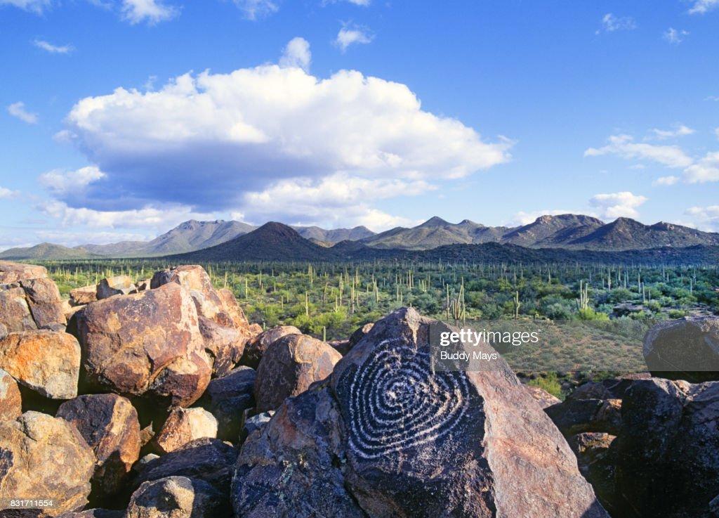 Petroglyphs, Saguro National Park : Stock Photo