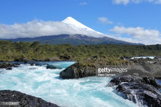 petrohue falls - petrohue river stock photos and pictures