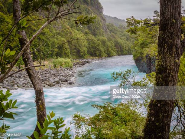 petrohue river framed - petrohue river stock photos and pictures