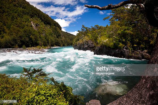petrohue river in the chilean lake district. - petrohue river stock photos and pictures