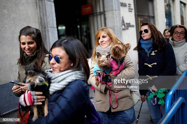 Pets are being blessed by a priest at San Anton Church in Madrid Spain on Saint Anthony's day dedicated to the animals by Spanish Christians on...