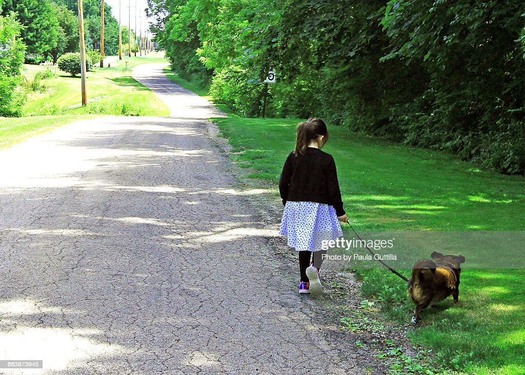 Pets on a Walk : Stock Photo
