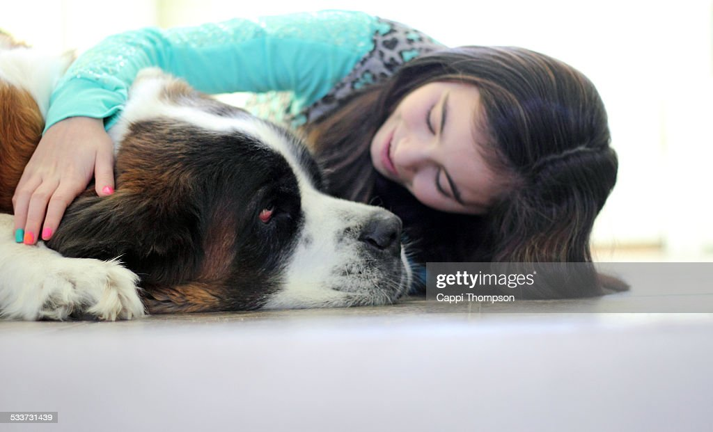 Petting the dog : Foto stock