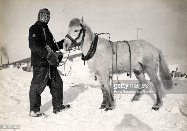 Petty Officer Evans and pony Snatcher Antarctica October 1911 British Antarctic Expedition 19101913