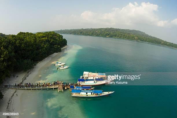 Peucang Island, Ujung Kulon National Park - Banten