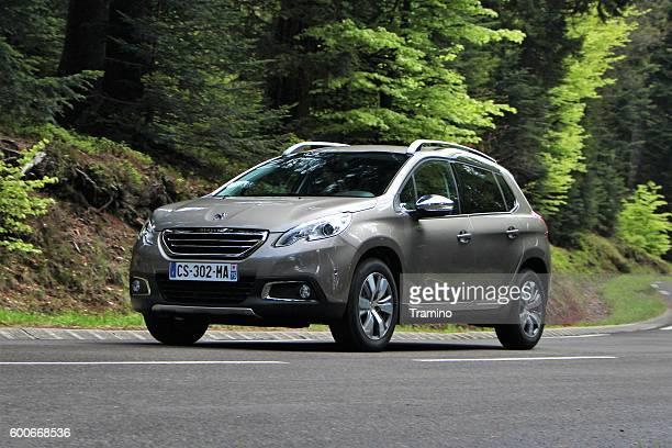 Peugeot 2008 - popular crossover