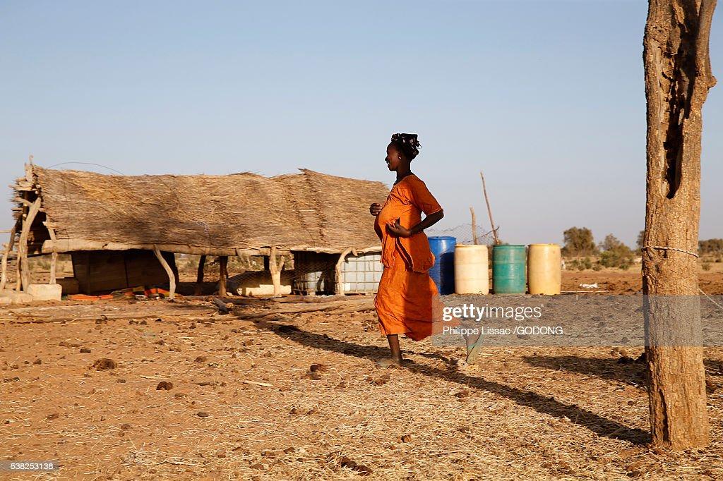 Peul village in Northern Senegal. : Stock Photo