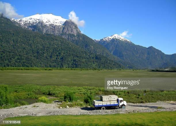 peulla - patagonia - patagonische anden stock-fotos und bilder