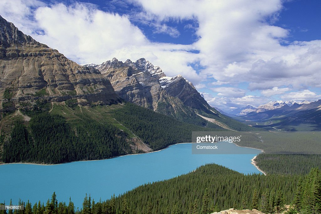 Peyto Lake at Jasper National Park , Alberta , Canada : Stockfoto