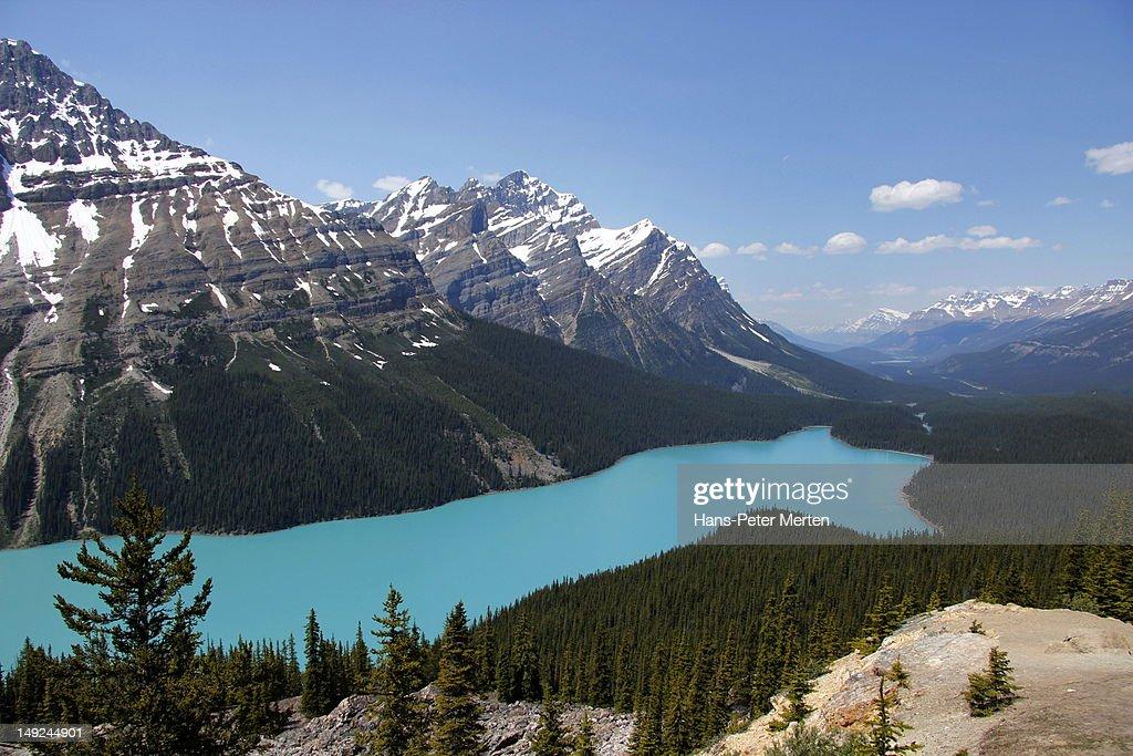 Peyto Lake, Banff Nationalpark, Alberta : Stock Photo