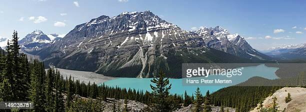 peyto lake, banff nationalpark, canada - kanada imagens e fotografias de stock