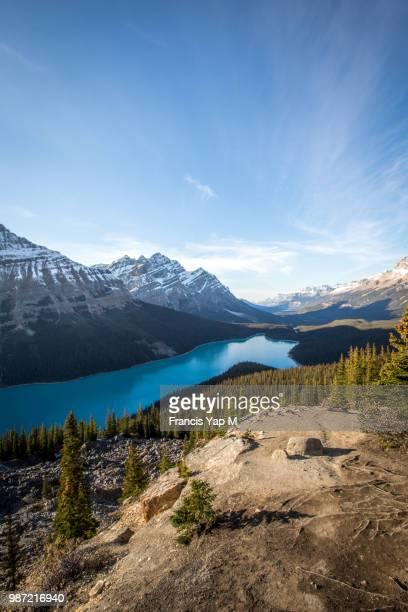 Peyto Lake in Banff National Park, Alberta, Canada.