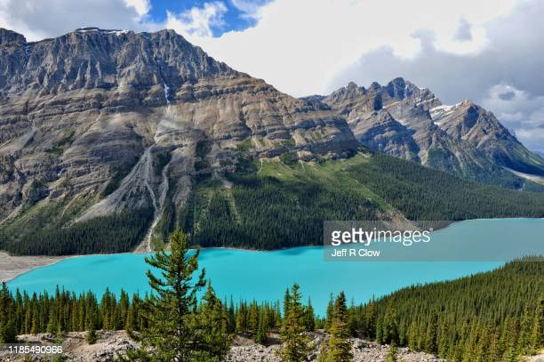 peyto lake in the springtime - canadian rockies stock pictures, royalty-free photos & images