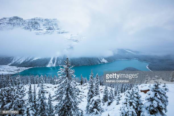 peyto lake in winter, banff national park, canada - canadian rockies stock pictures, royalty-free photos & images