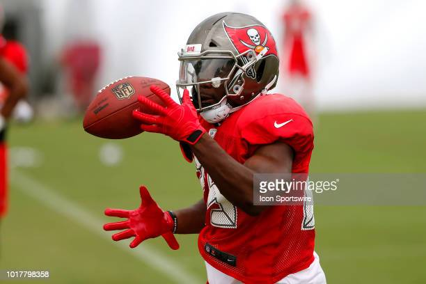 Peyton Barber of the Bucs makes a catch during the joint training camp work out between the Tampa Bay Buccaneers and the Tennessee Titans on August...