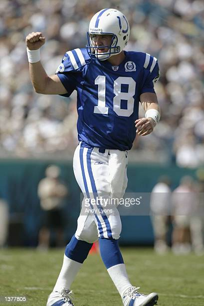 Peyton Manning of the Indianapolis Colts celebrates throwing a touchdown against the Jacksonville Jaguars during the game on September 8 2002 at...