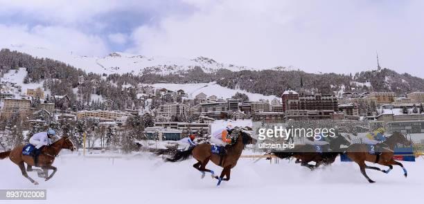 White Turf St Moritz 2014 Flachrennen 800 Meter Alexander Pietsch auf The Art of Racing Daniele Porcu auf Boccalino Silvia Casanova auf Zarras Fergus...