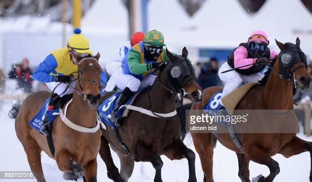 White Turf St Moritz 2014 Flachrennen 800 Meter Alexander Pietsch auf The Art of Racing Daniele Porcu auf Boccalino und Silvia Casanova auf Zarras