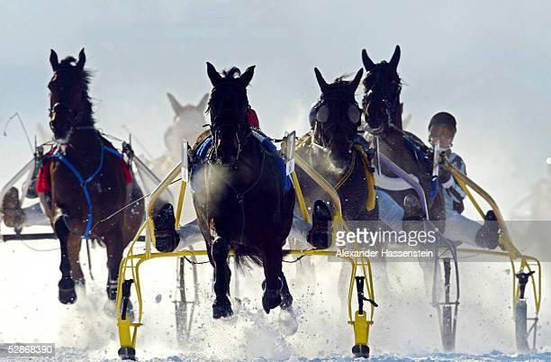Pferdesport/Traben White Turf Rennen 2003 St Moritz 090203