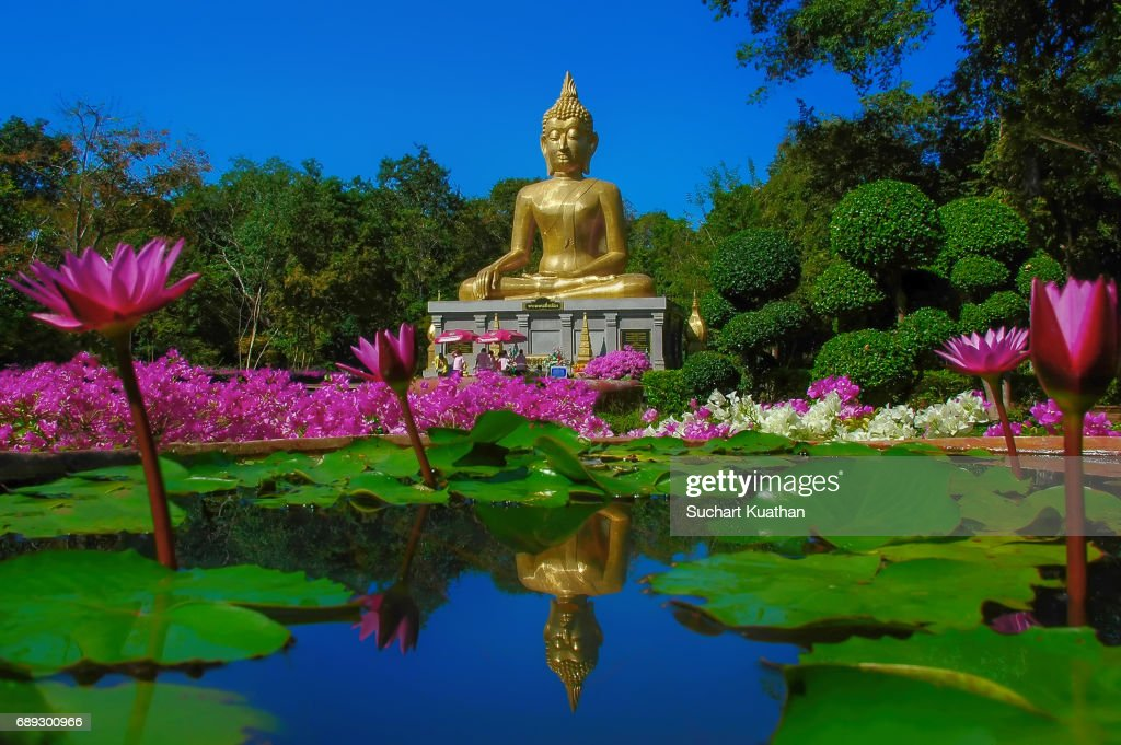 Pha Mongkhon Ming Muang and The Buddha Utthayan. Beautiful Temple of Amnat charoen, Thailand : Stock Photo