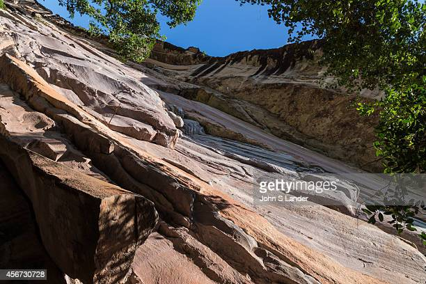Pha Taem National Park is made up of a rocky plateau rising from the west covered in dry forest which ends up in sheer cliffs dropping down into the...