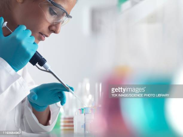 pharmaceutical research - science stock pictures, royalty-free photos & images