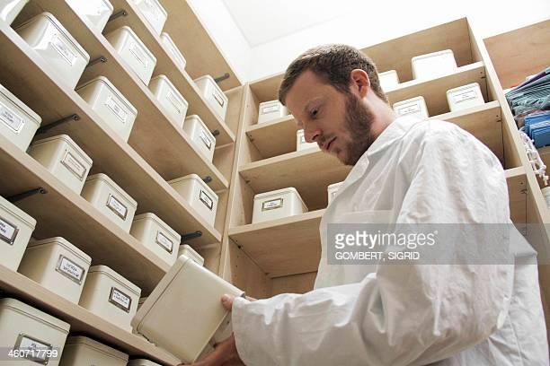 pharmacist selecting drugs - sigrid gombert stock pictures, royalty-free photos & images