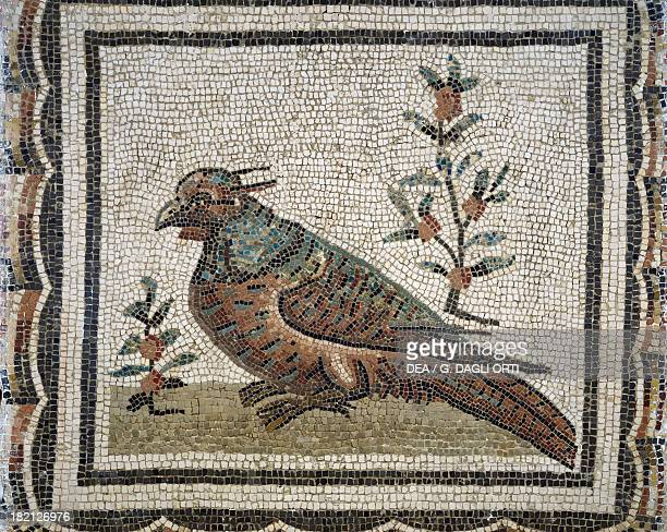 A pheasant detail of a mosaic with medallions containing Xenia motifs uncovered in Thysdrus Tunisia Roman Civilisation end of 2nd century Tunis Musée...