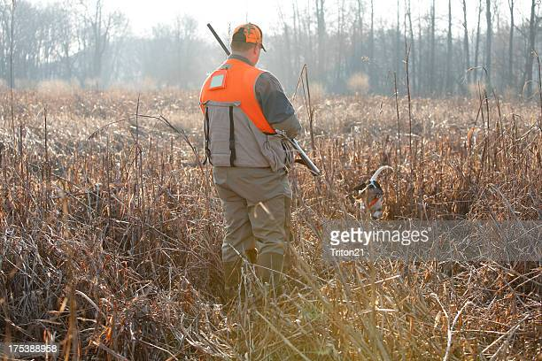Faisan avec un chien de chasse