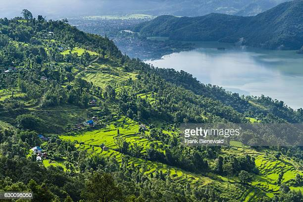 Phewa Lake Pokhara and agricultural landscape seen from a mountain ridge