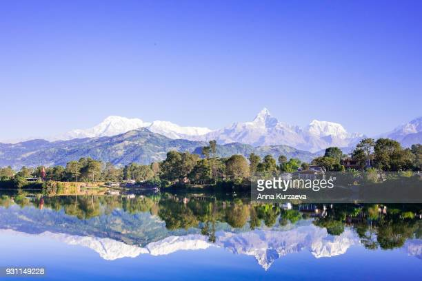 phewa lake with the himalayan mountains on the background including annapurna and machapuchare, nepal. nature background. mountain background. tranquil scene. water reflection. - machapuchare stock photos and pictures