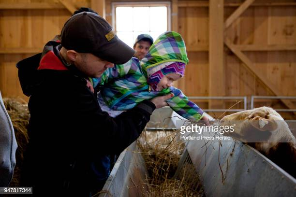 Phil Daigle of Yarmouth holds his daughter Natalie Daigle so she could feed hay to sheep during the First Time Farmers program at Wolfe's Neck Center...