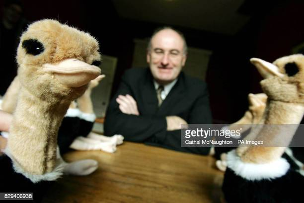 Phil Hogan Fine Gael Enterprise Trade and Employment spokesman reaches for one of 15 ostriches representing the Taoiseach and his cabinet in central...