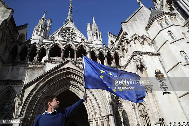 Phil Jones 'People's Challenge' member waves an EU flag outside the Royal Courts of Justice on October 13 2016 in London England Investment manager...