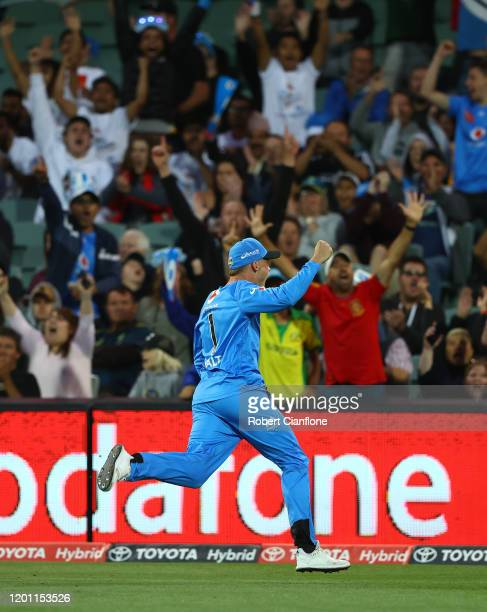 Phil Salt of the Strikers celebrates taking a catch to dismiss Marcus Stonis of the Stars during the Big Bash League match between the Adelaide...
