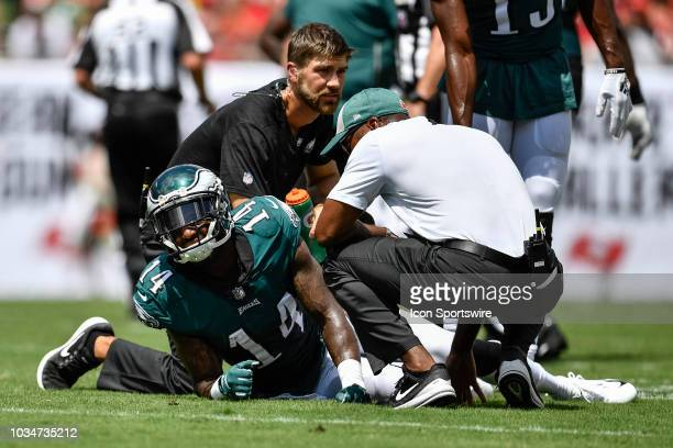Philadelphia Eagles wide receiver Mike Wallace is attended by trainers after an injury during an NFL game between the Philadelphia Eagles and the...
