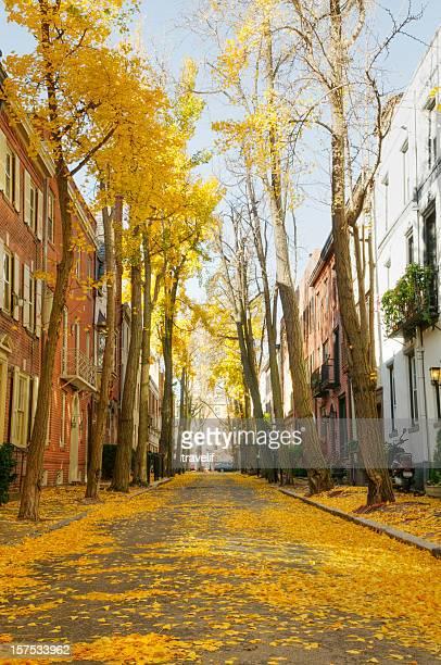 Philadelphia residential street in autumn