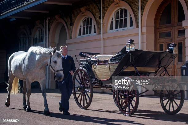 Philip BarnardBrown Senior Coachman at the Buckingham Palace Mews leads a Windsor Grey one of the four horses that will pull the carriage at the...