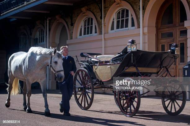 Philip BarnardBrown Senior Coachman leads out a Windsor Grey one of four horses that will pull the Ascot Landau carriage carrying Britain's Prince...